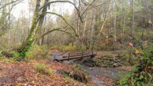 Old Bridge at Swan Creek Park